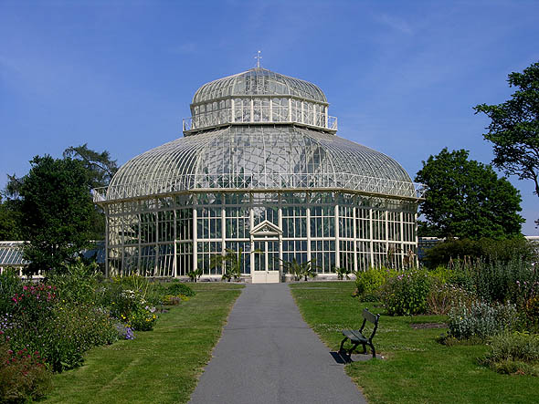 1884 &#8211; Great Palm House, Botanic Gardens, Glasnevin, Dublin