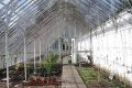 garden_glasshouse_interior_lge