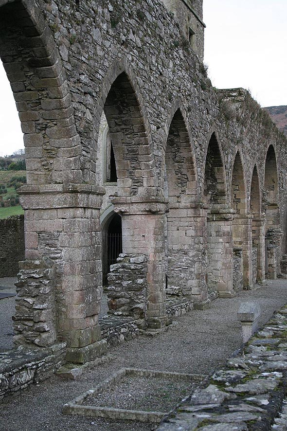 1150 – Baltinglass Abbey, Co. Wicklow