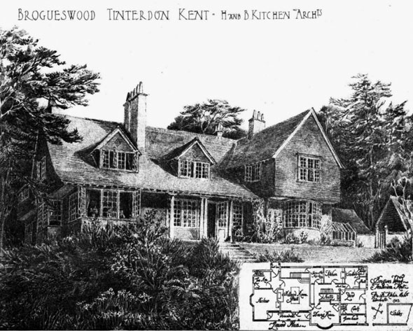 1905 &#8211; Brogues Wood, Tinterdon, Kent
